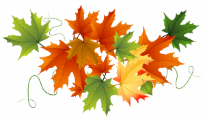 Thanksgiving Message from Trustee McNicol
